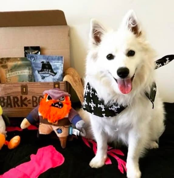 BarkBox Subscription Review 2