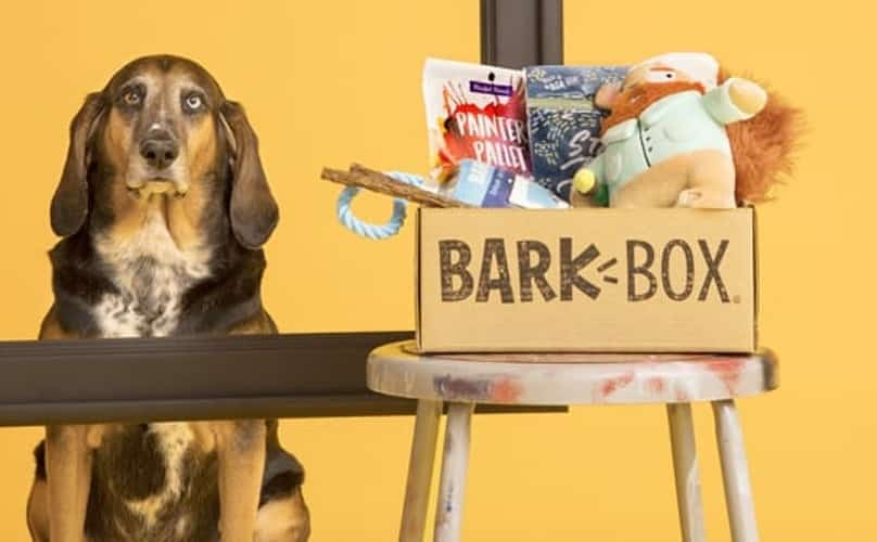 BarkBox Subscription Review 3