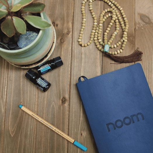 Noom Subscription Review