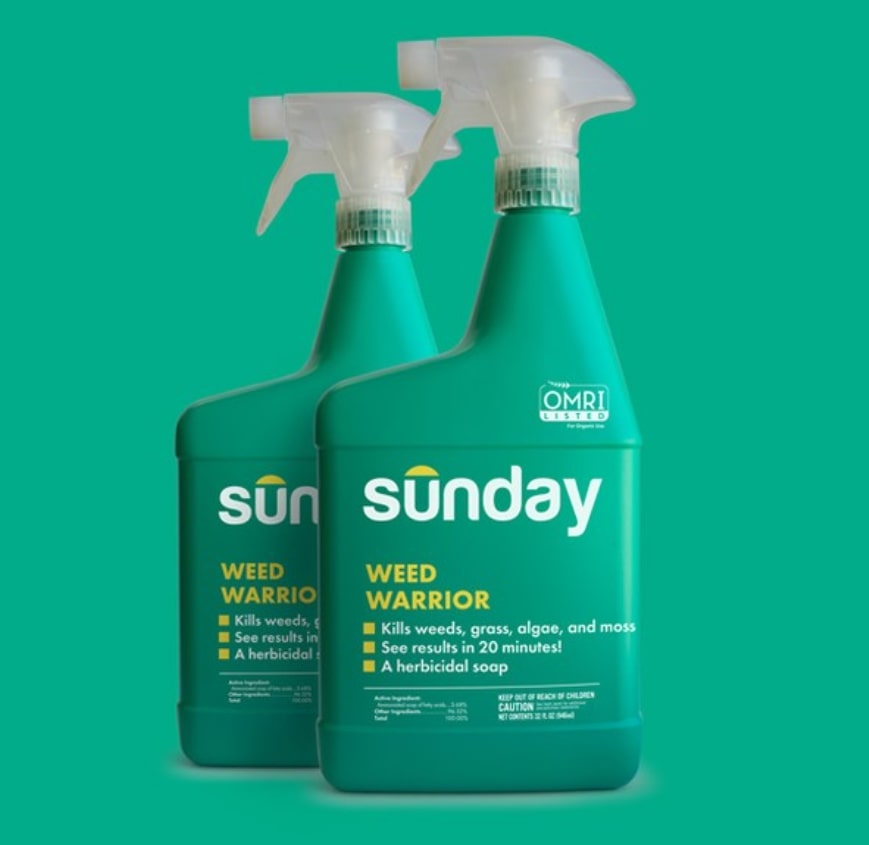 Sunday Lawn Care Weed Control