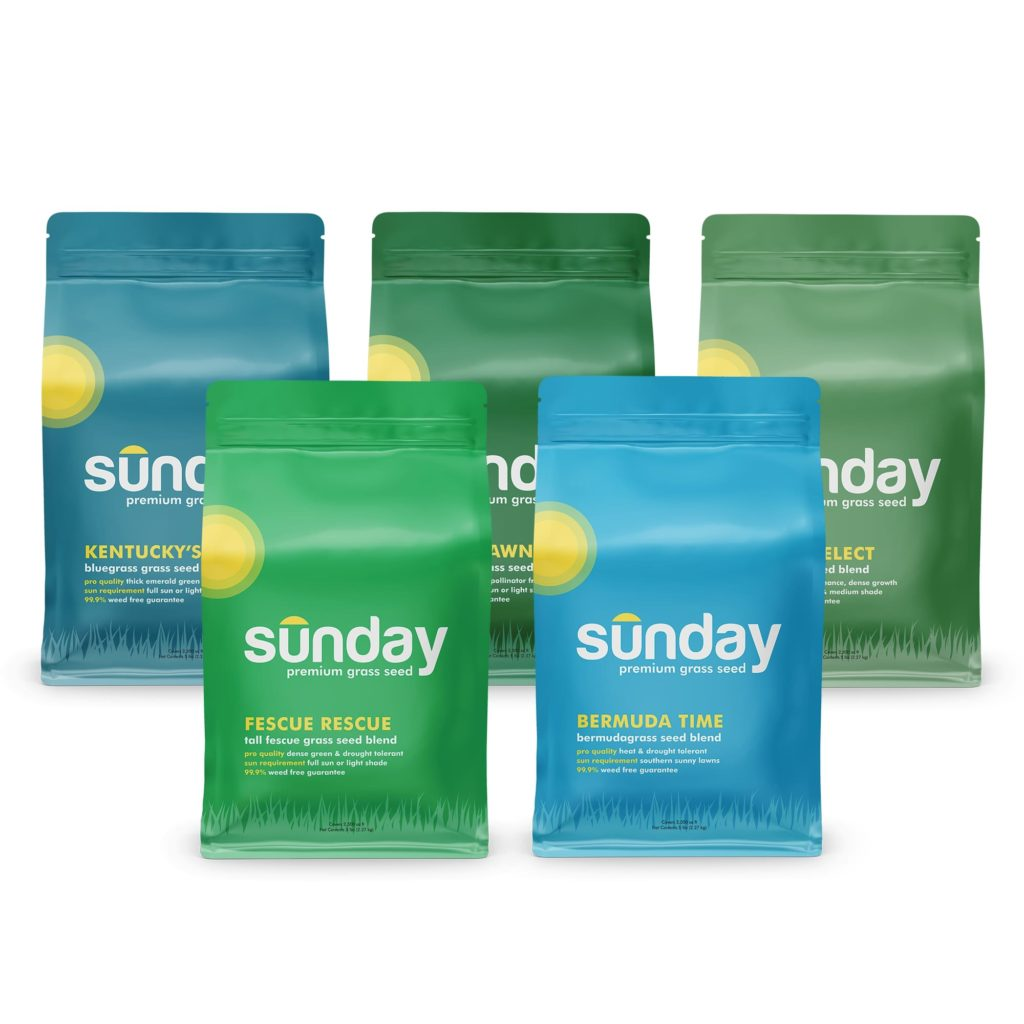 Sunday Lawn Care Seeds Review