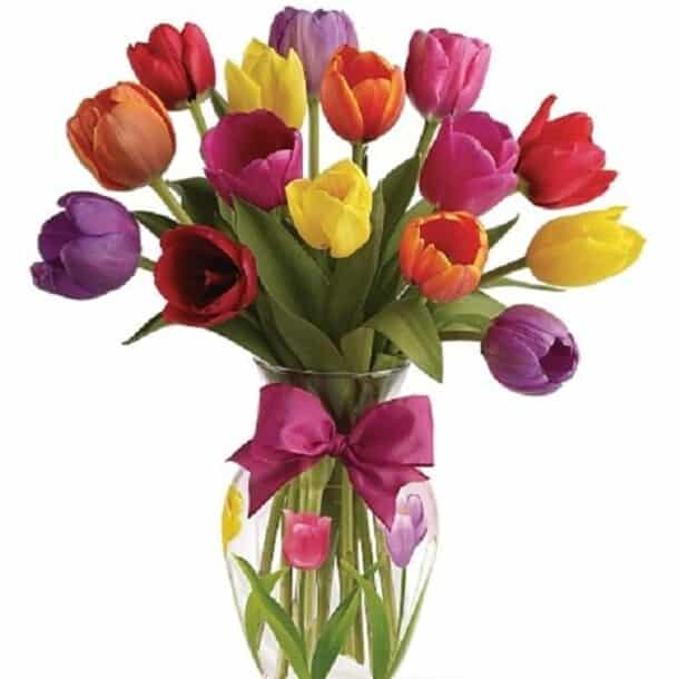 Bloomex Spring Tulips Review