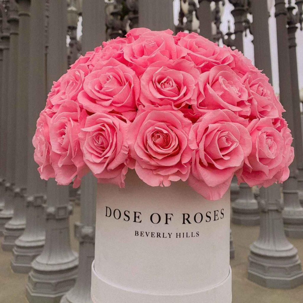 Dose of Roses Flowers Review