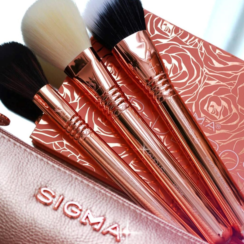 Sigma Beauty Brushes Review