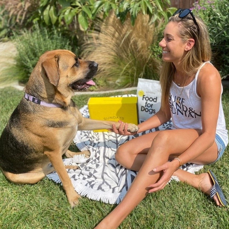 Sundays Food for Dogs Review