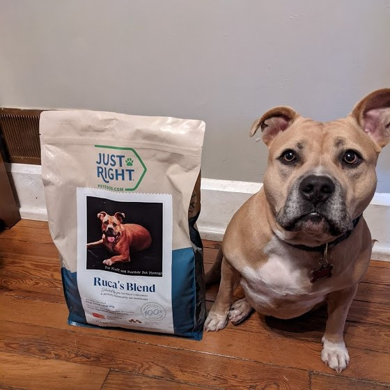 Just Right Pet Food Review